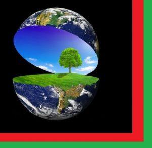 materiale de constructii ecologice
